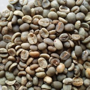 Arabica Coffee Beans wholesale