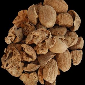 Nutmeg BWP