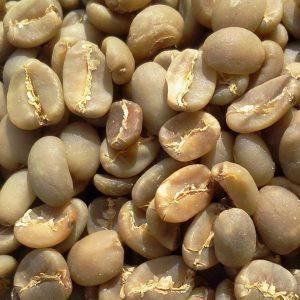 Robusta Coffee Beans Supplier