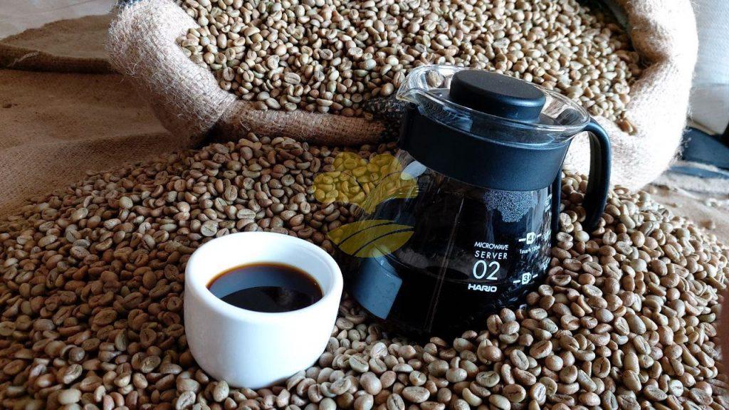 Robusta Coffee Beans Cheap