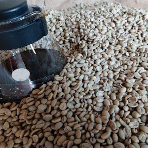Robusta Coffee Beans Price