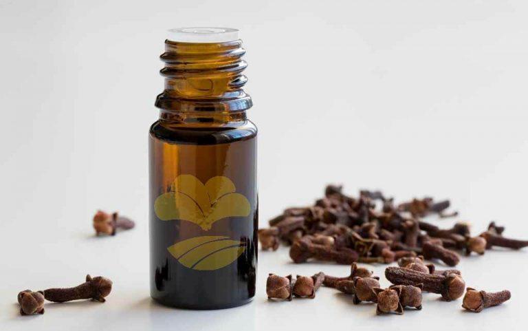 clove-leaf-oil-wholesale