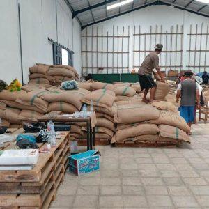 Buy Arabica Coffee Beans Wholesale